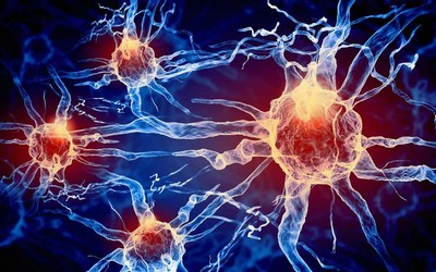 Human Cells Electricity ElectroMeds