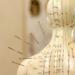 acupuncture meridian pemf teas